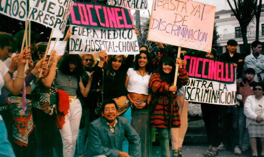 Coccinelli Diverso Ecuador
